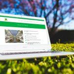 desarrollo y diseño web en Valencia