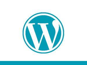 Bonos de desarrollo para wordpress. Mantenimiento Wordpress.