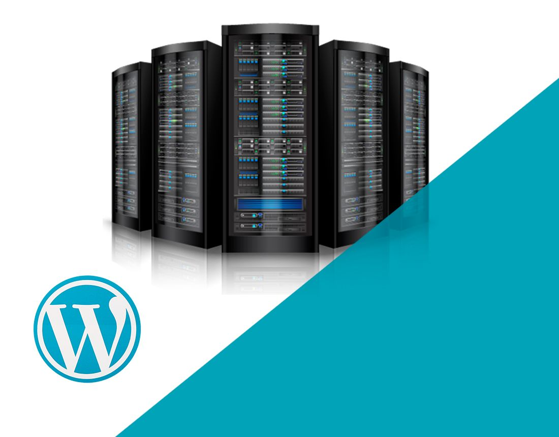 Hosting wordpress optimizado. Empresa Alojamiento CMS.