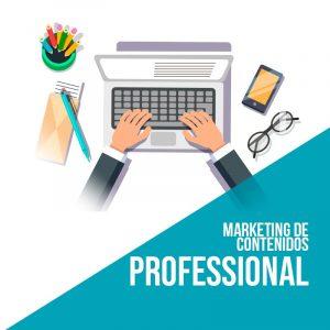 Plan marketing de contenidos Professional. Agencia marketing digital.