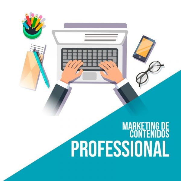 Plan marketing de contenidos Professional. Agencia marketing digital.