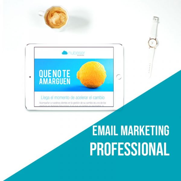 Plan Email Marketing Professional: Campañas de email marketing. Agencia marketing online.