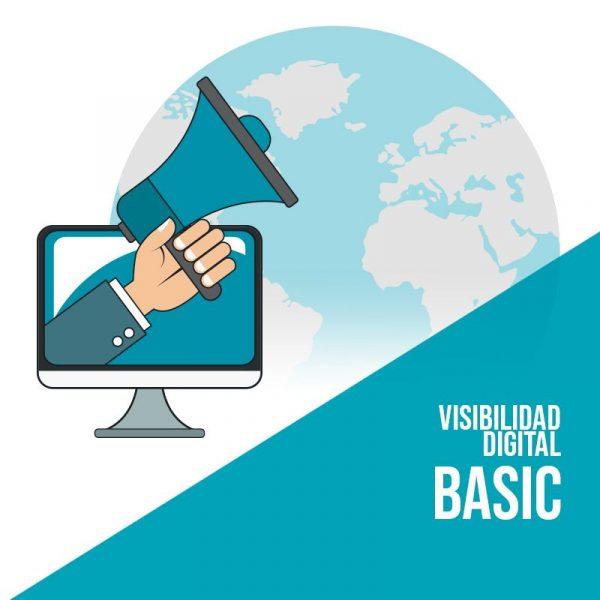 Visibilidad Digital Basic: Social Media, Marketing de contenidos con SEO y Publicidad en Redes Sociales y Google Adwords.