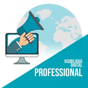 Plan Visibilidad Digital Professional: Publicación en redes sociales, marketing de contenidos y publicidad digital.