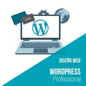Plan diseño web wordpress Professional. Empresa desarrollo web y diseño web.