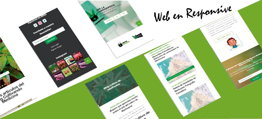 Cultivando Medicina: Diseño web Wordpress Responsive&&ciudad&& y posicionamiento seo&&ciudad&&.
