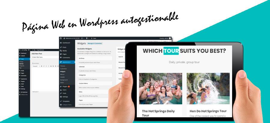 Página web Wordpress&&ciudad&& GO Valencia Tours