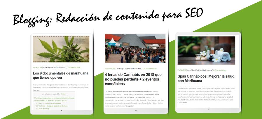 Cultivando Medicina: Diseño web Wordpress Responsive&&ciudad&& y posicionamiento web&&ciudad&&.