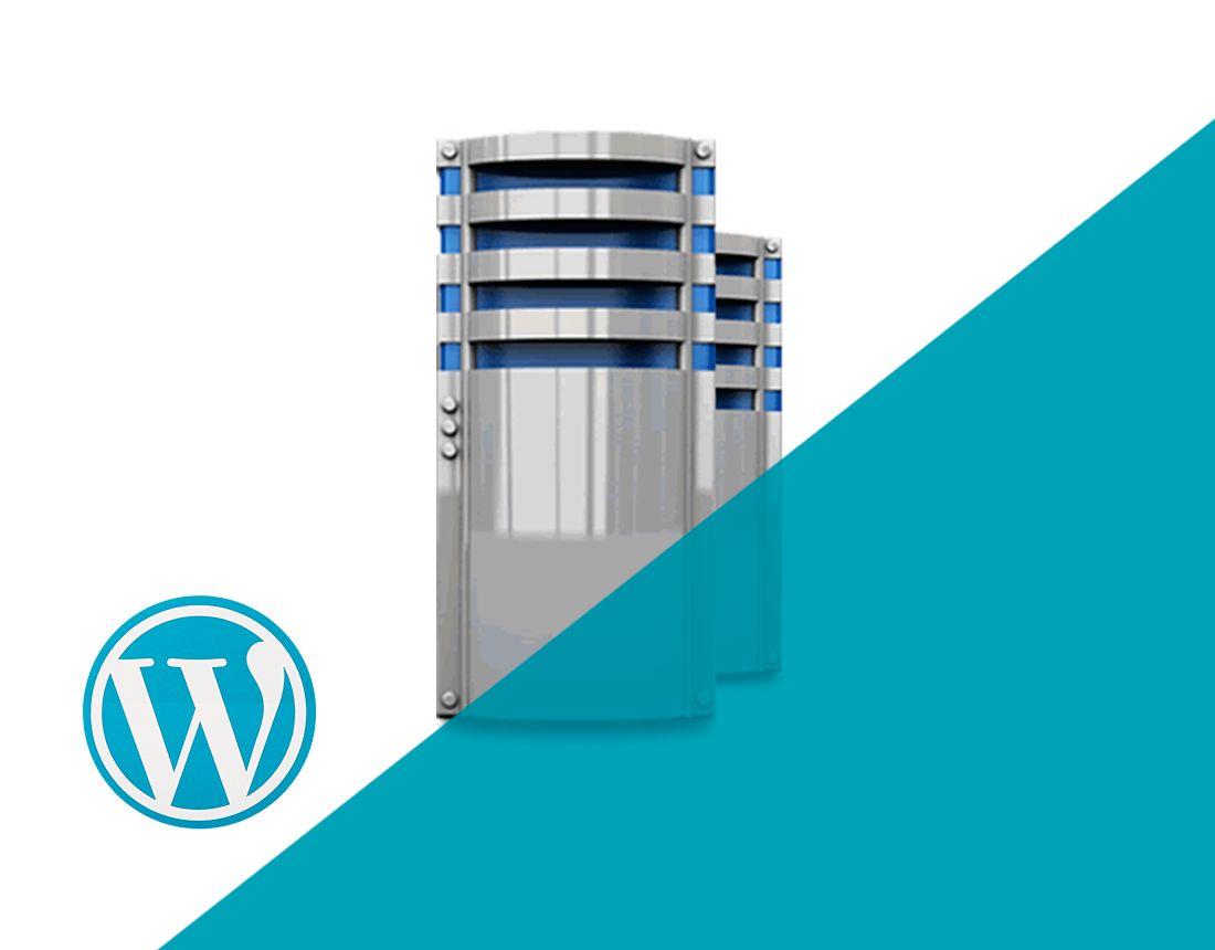 Servidor VPS SSD NVMe WordPress Servidor VPS NVMe para Wordpress